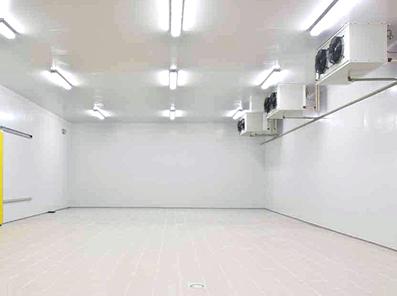 Камеры из стеновых теплоизоляционных панелей